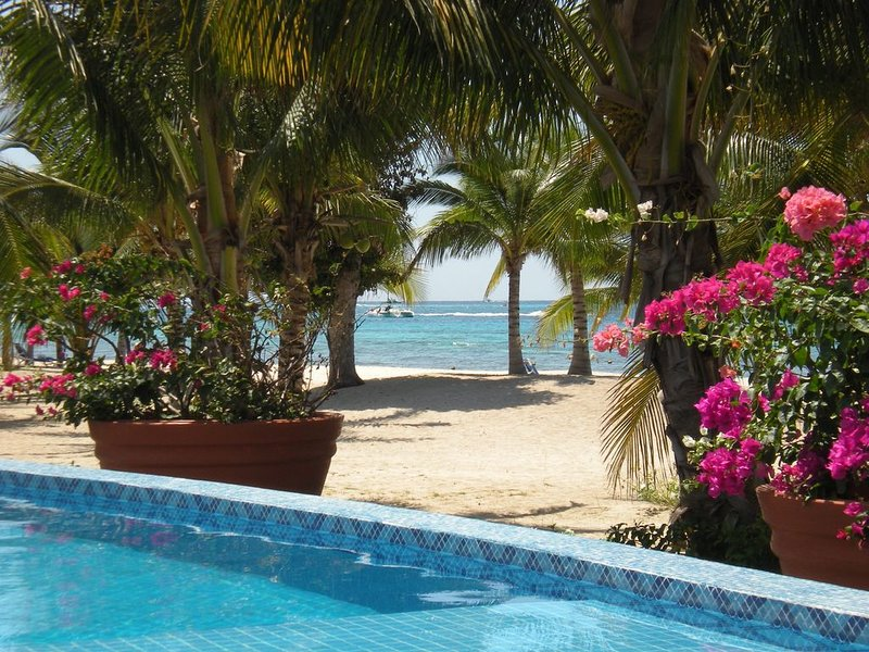 Ready for YOU! Ocean View, Private Beach & Balcony, vacation rental in Cozumel