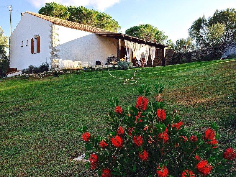 stazzo sardo nel cuore della Gallura   a pochi km dal mare, holiday rental in Bassacutena