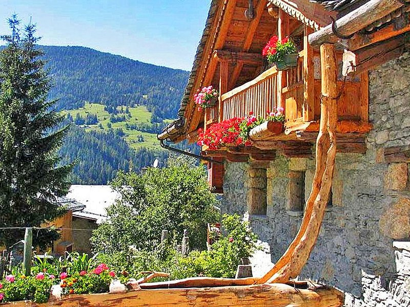 Sublime chalet of character with a cozy atmosphere, holiday rental in Peisey-Vallandry