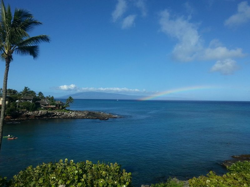 Private Ocean Front 2BD/2BA Napili Point C-20 Amazing View Condo Swim W/ Turtles, alquiler de vacaciones en Kapalua