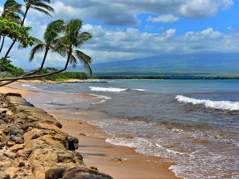Lovely Beachfront Condo With Pool, Sandy Beach And Spectacular Ocean Views, Ferienwohnung in Wailuku
