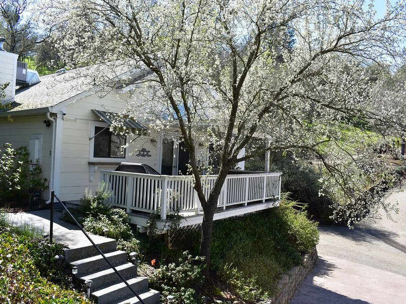 Serene Amador City Wine Country Home, holiday rental in Barton
