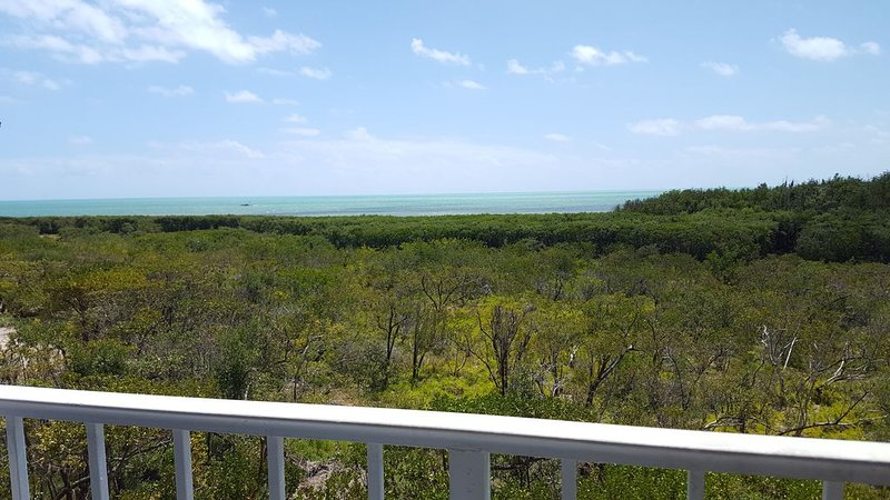 Tastefully Renovated Oceanview Condo: Prices Starting*$159.00/nt with FREE WiFi, vacation rental in Tavernier