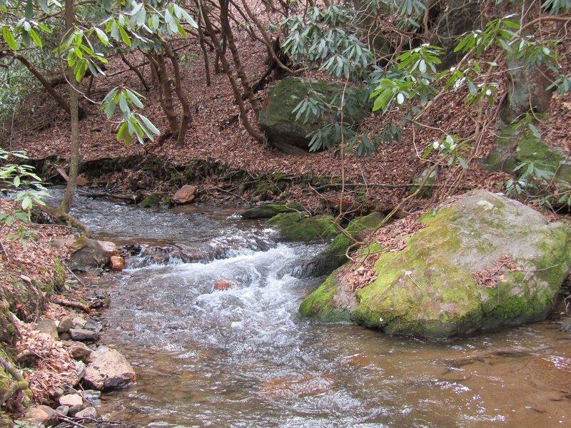 A Hiker's Paradise!  Private Cabin on Small, Rushing Stream Near A/T, aluguéis de temporada em Hiawassee