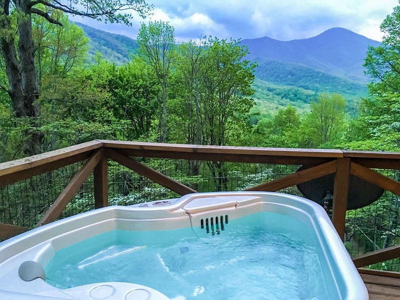 Treetop Mountain Vista , Couples Hideaway, Hot Tub Under Starlit Sky, Hiking!, holiday rental in Candler
