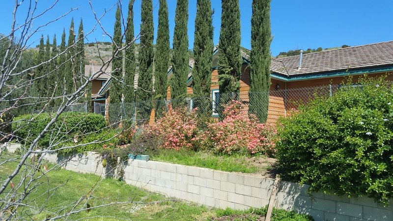 NEW 2010 CUSTOM RUSTIC SECLUDED VIEW HOME, POOL, DOGS YES, ORCHARD, DBL FENCED, holiday rental in Pauma Valley