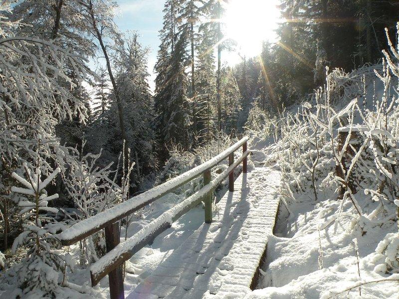 Nature Trail Granitzenbach in winter