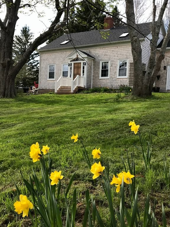 Michaelmas Cottage in the spring.