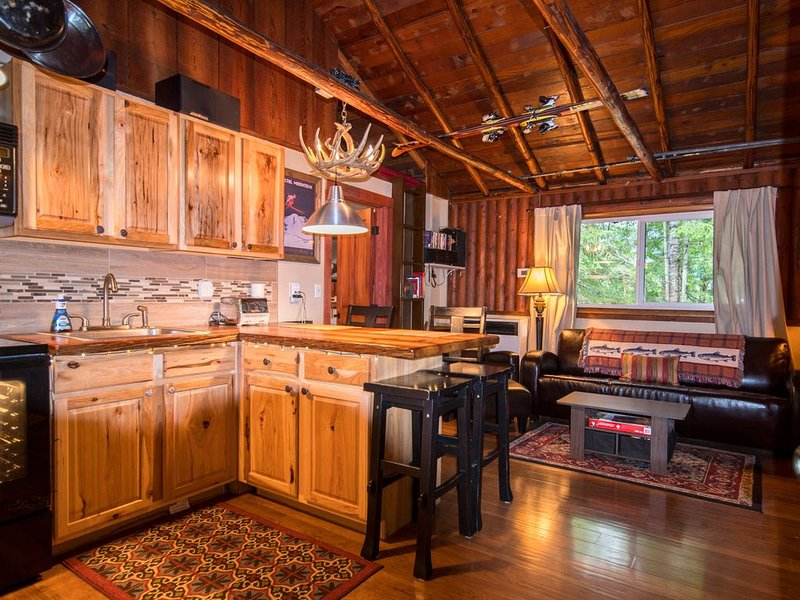 Cozy Packwood Ski Cabin Rental near White Pass, holiday rental in Packwood
