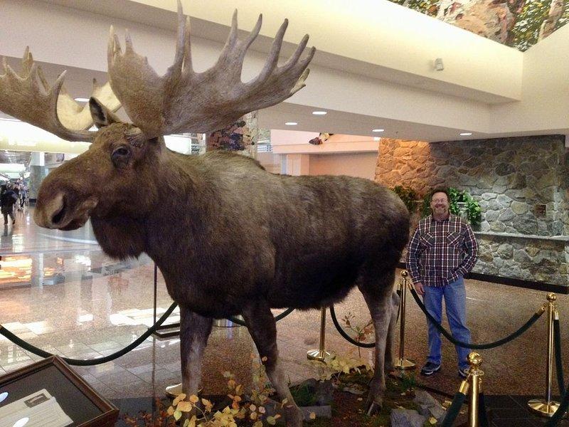 """Una oportunidad """"no se pierda"""" foto en el Aeropuerto Ted Stevens en Anchorage"""