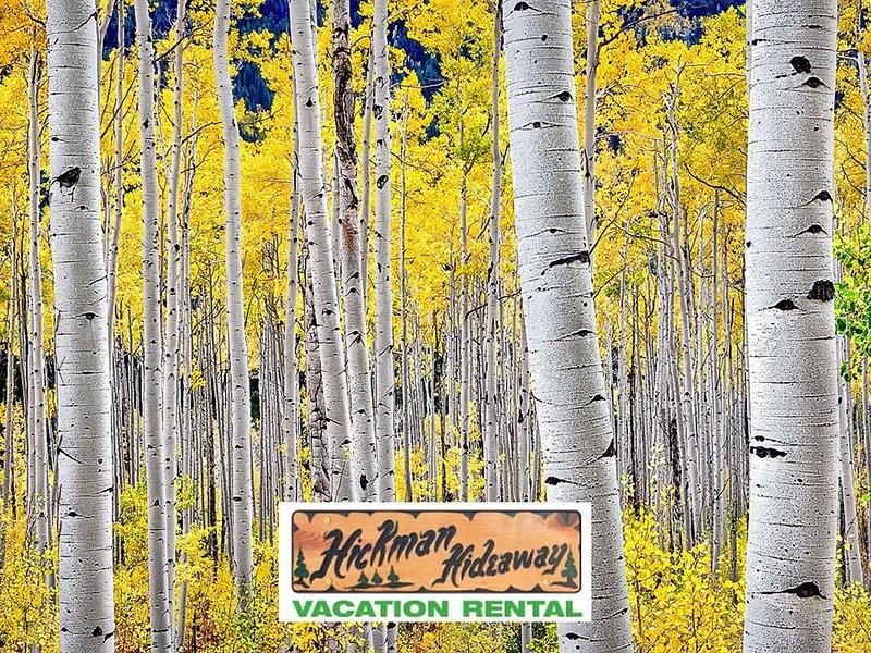 Venez séjourner à Hickman Hideaway pour un moment de détente avec Mère Nature.