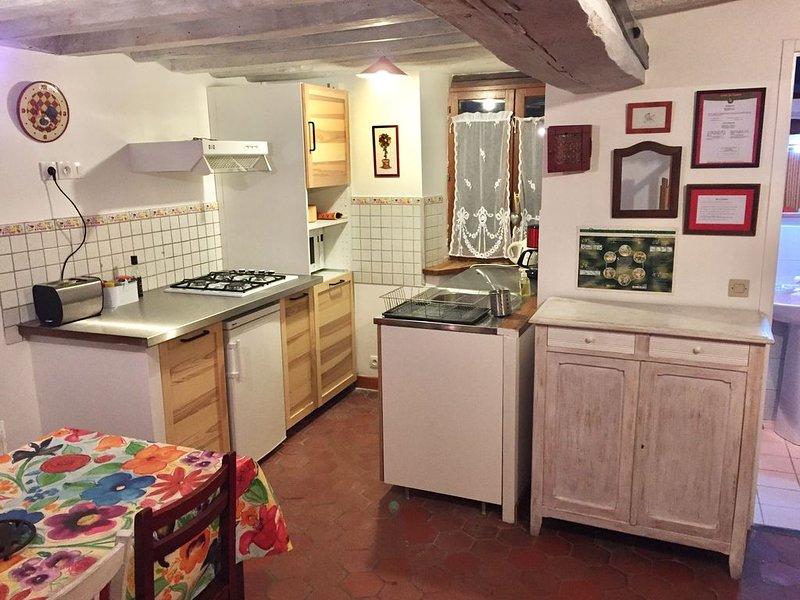 Gîte 4 pers. joli village calme du Gâtinais proche de la forêt des Trois Pignons, vacation rental in Noisy-sur-Ecole