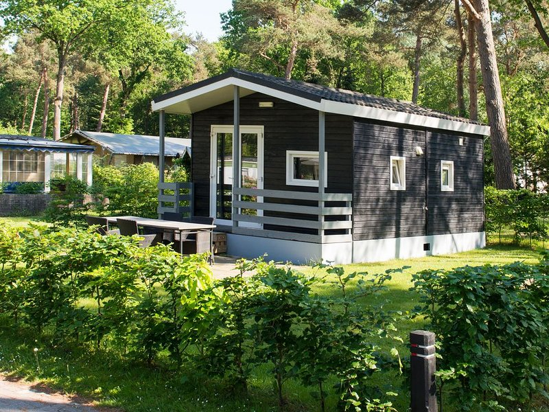 Detached chalet in a forested setting, in a holiday park with a pool and more, vacation rental in Haghorst