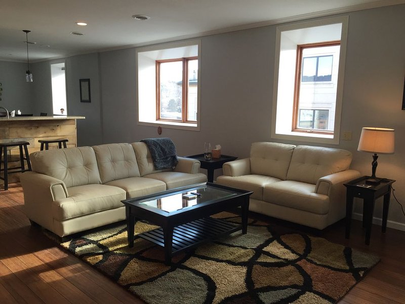 Fully Furnished Loft in Downtown Decorah, IA, vacation rental in Decorah