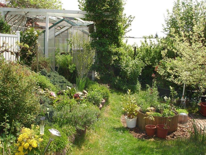 Garden in front of the terrace