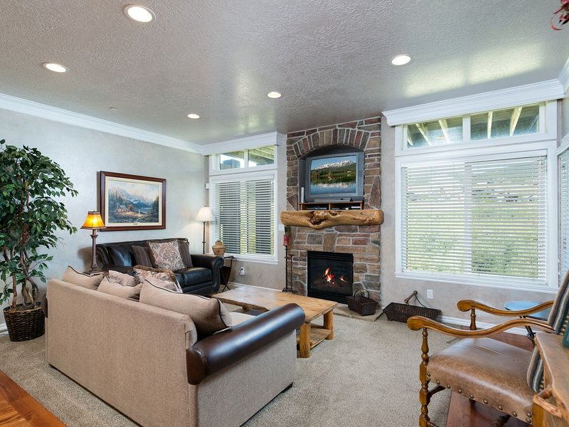 Living area/queen sofa sleeper/gas fireplace/tv