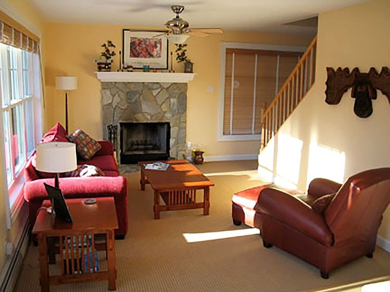 Sala de estar con chimenea que funciona junto a la cocina.