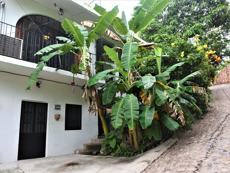 Casa Madina - A Hacienda On A Hill - Views Of Bay And Zona Romantica, vacation rental in Puerto Vallarta