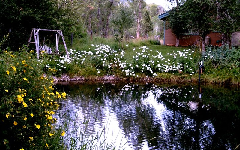 Private home, creek, pond, serene, quiet, breathtaking landscape, casa vacanza a Afton