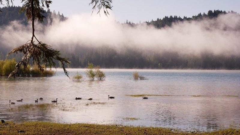 Cerca de Scott's Flat Lake.