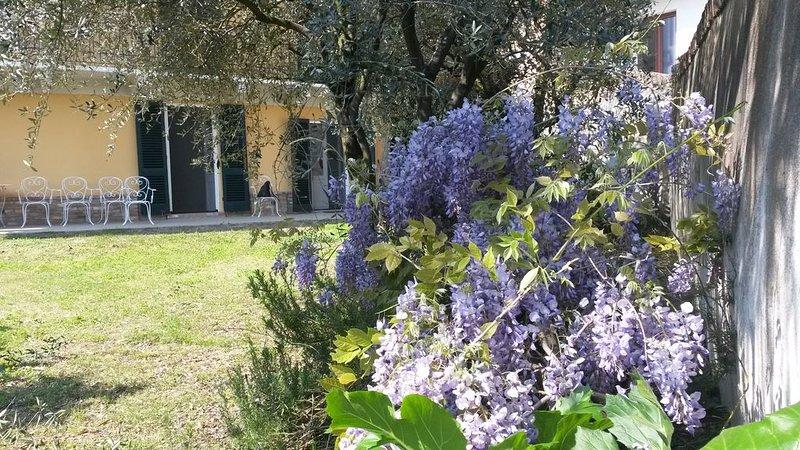 Immersi nel verde relax di una autentica cascina e comoda ai servizi, vacation rental in Sciolze