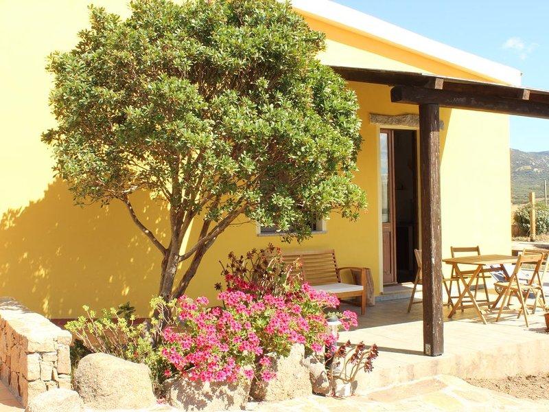Agriturismo Campesi, casa vacanze vicino al mare, con vista sui vigneti., holiday rental in Aglientu