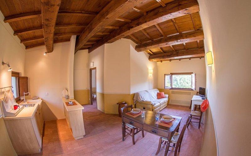Vocabolo Monache - La Rocca, holiday rental in Rancolfo