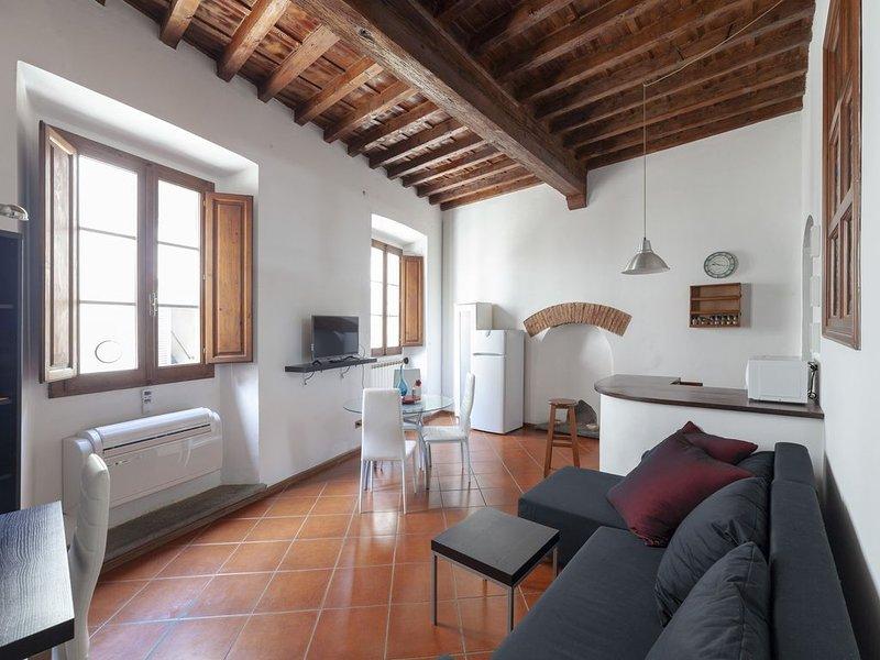 Indipendente 50 metri dal Duomo centralissimo e molto toscano, holiday rental in San Martino alla Palma