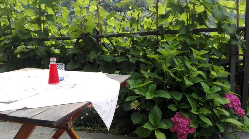CASA ALESSIA NEL VERDE CON POSTEGGIO E WIFI, holiday rental in Province of Genoa