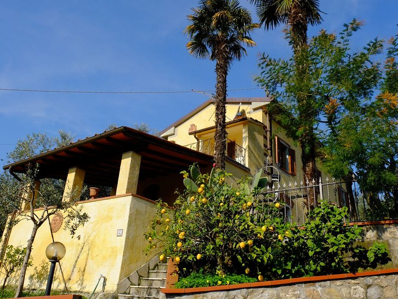 Lemon Hill -  Villa di campagna tra Pietrasanta e Camaiore, vacation rental in Camaiore