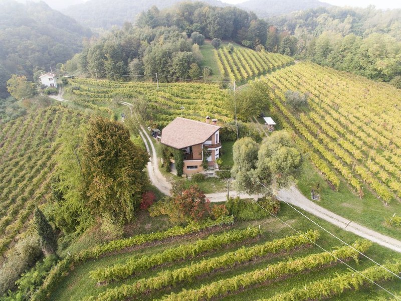 A house in the vineyard, holiday rental in Monfumo
