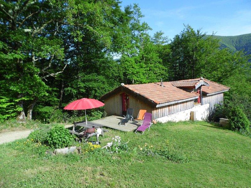 Gites des Pics : le Pic noir - vue panoramique, holiday rental in Moulis
