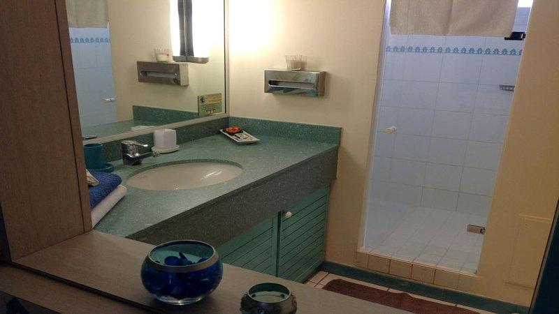 très beau studio climatisé résidence hôtelière le carayou pointe du bout 3 ilets, location de vacances à Trois-Îlets