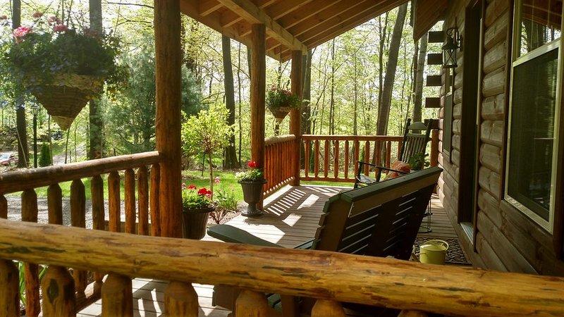 Forever Spring Cabin, holiday rental in Wayne  Ashtabula County