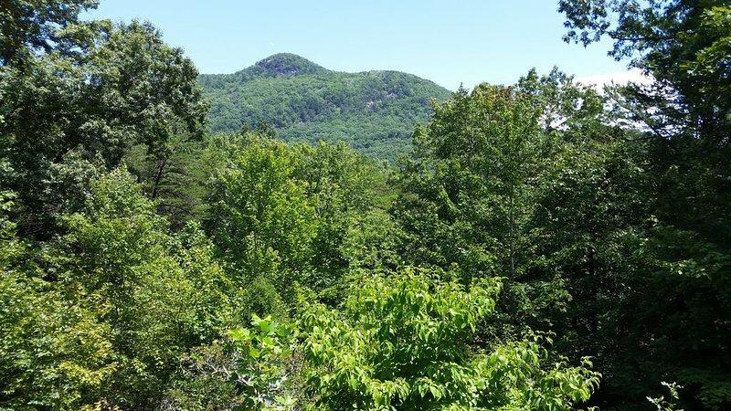 North Georgia Mountain Getaway, holiday rental in Clayton