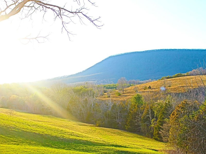 FatDog Farm - Picturesque & Just Minutes To Lexington, VMI and W&L, holiday rental in Brownsburg
