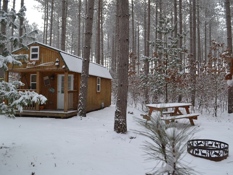 Tiny House/Cabin Close To The Dells Secluded 10 AC--the Hide Out Cabin..., casa vacanza a Mauston