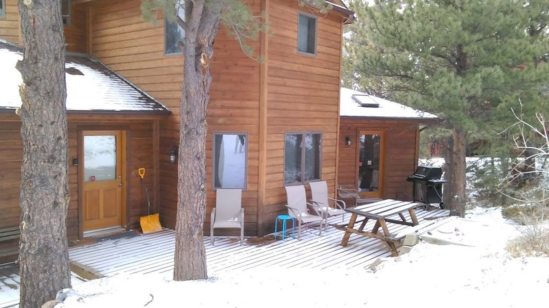 Beautiful, pet friendly and at the foot of Saxon Mountain in Georgetown Colorado, alquiler vacacional en Georgetown