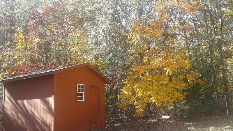 Vista de outono quintal.