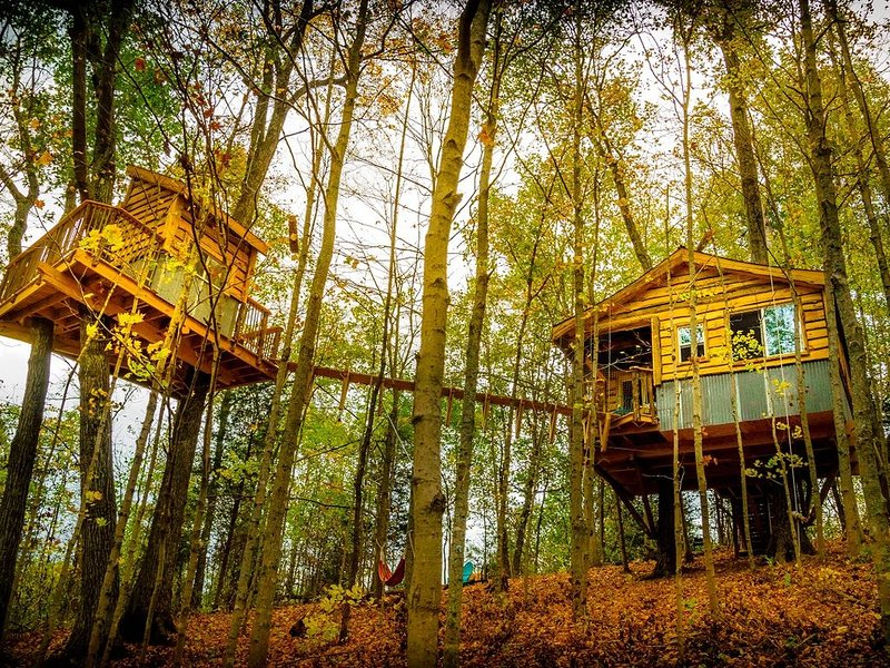 TreeHouse ~'The Aliyah' with swinging bridge +200 acres hiking trails, holiday rental in Ripley