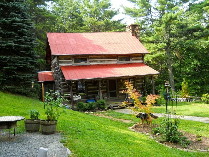 Gorgeous 1800's Cabin with Modern Touches for the Perfect Getaway, holiday rental in Dobson