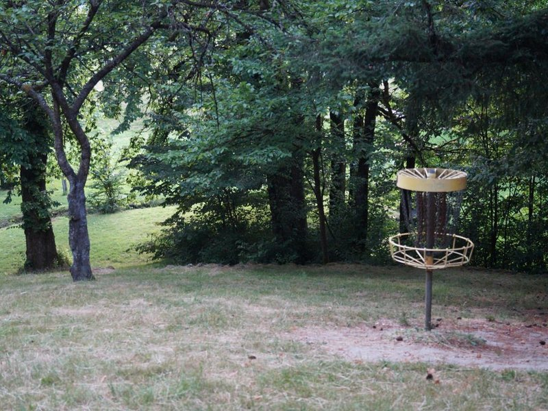 Frisbee Golf at the park