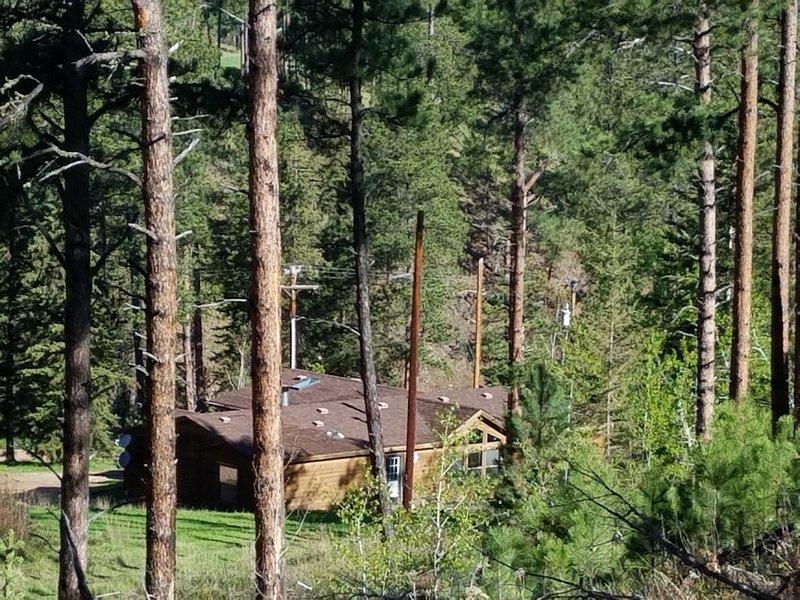 Two Bit Creek - Remote setting near Deadwood!, alquiler de vacaciones en Sturgis