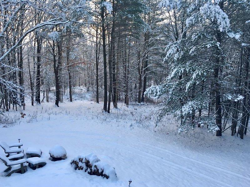 La vue de la cour après la première neige de la saison.