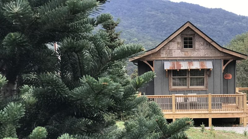 A hand-crafted cabin built in the middle of a Christmas Tree farm., alquiler de vacaciones en Waynesville