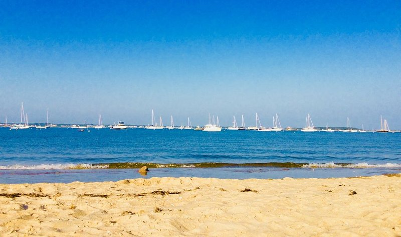 Great Family Escape to Cape Cod! Spend the summer relaxing on a private beach., location de vacances à Hyannis