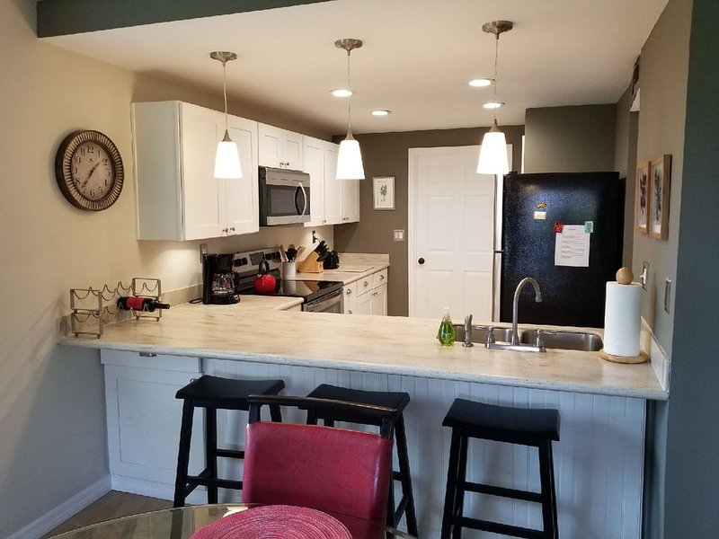 Beautiful Ponce Inlet 2bd Condo.  100 Yards to the Beach! Beach supplies/bikes, vacation rental in Ponce Inlet