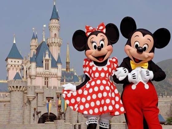 Enjoy day trips to Busch Gardens, Seaworld, Tampa Water Park, Legoland & Disney!