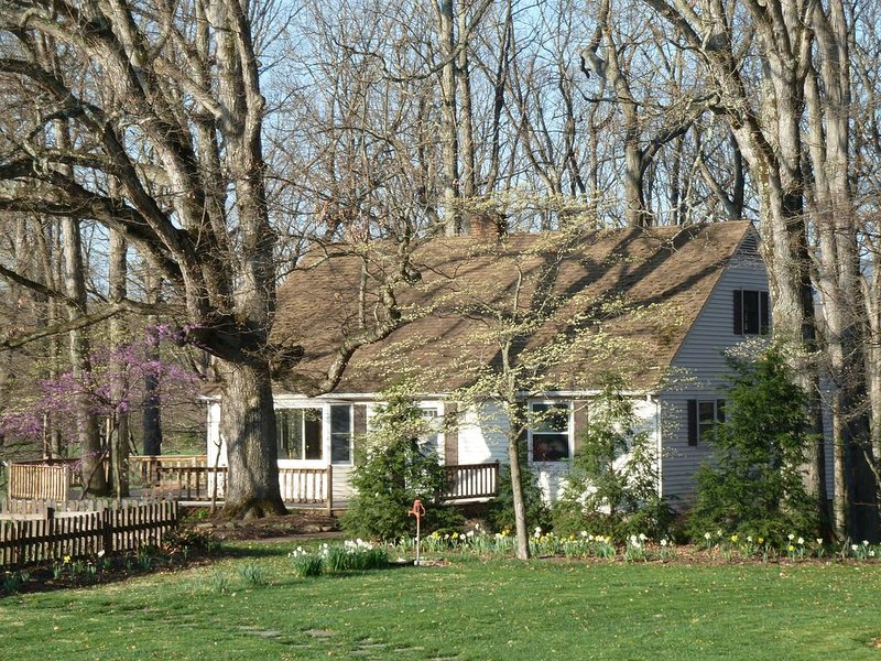 Oak Tree Cottage: a beautiful farm & mountain views., alquiler vacacional en Staunton