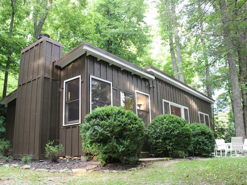 Mid-Century Mountain Cabin off Blue Ridge Parkway, holiday rental in Spruce Pine